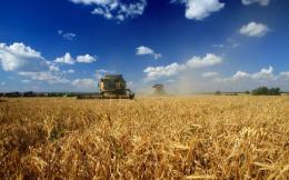Генная инженерия и сельское хозяйство