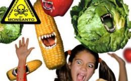 ГМО против человека